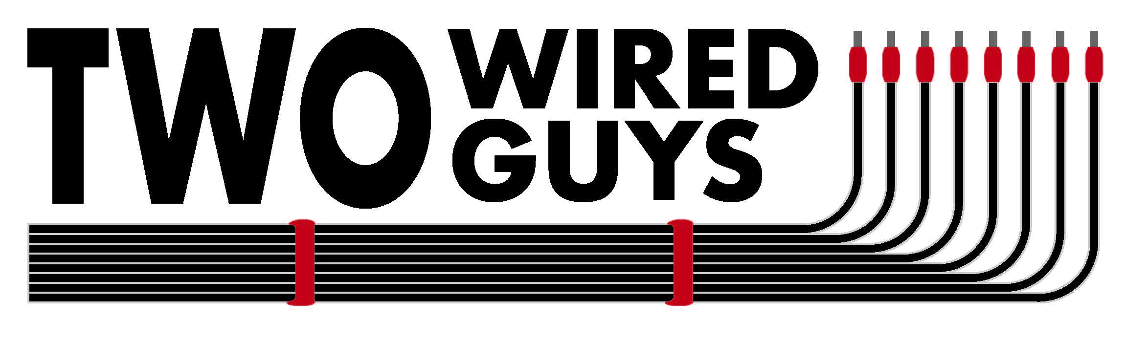 Two Wired Guys Logo